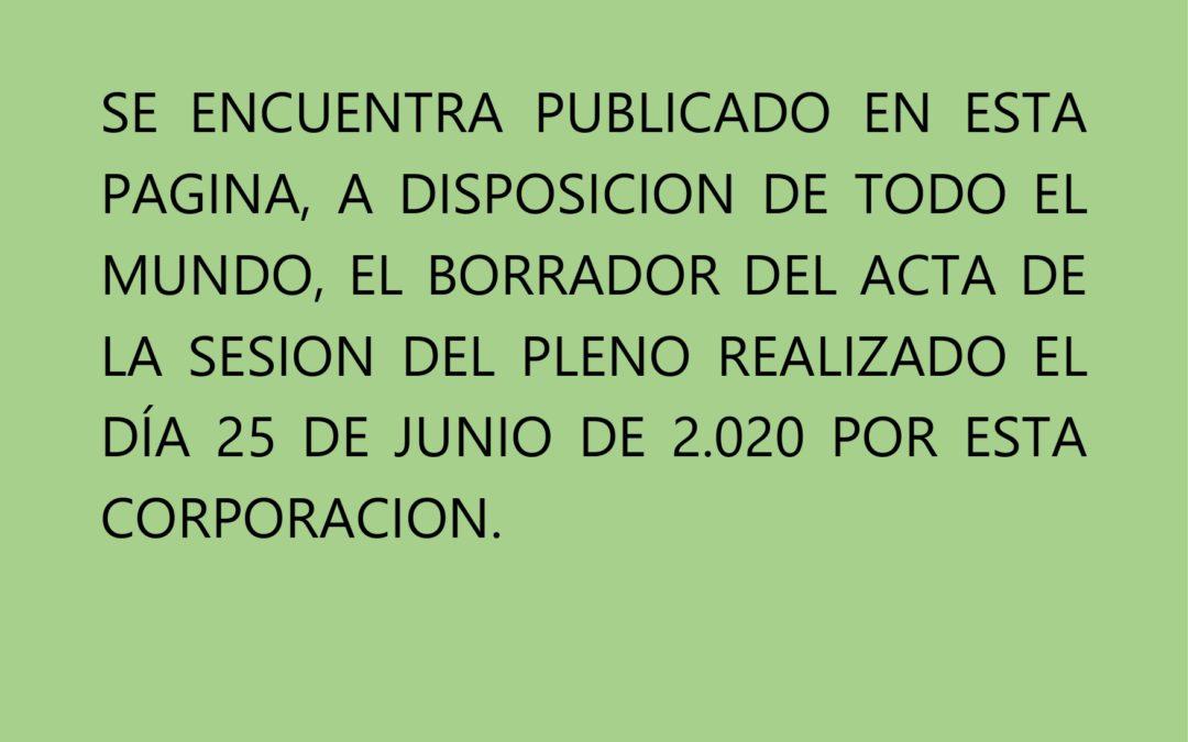 PUBLICACION BORRADOR ACTA PLENO 25 JUNIO